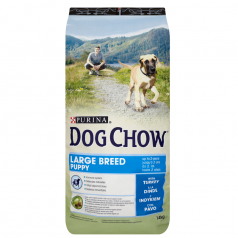 Purina Dog Chow Puppy Large Breed z indykiem