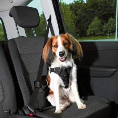 Trixie Szelki samochodowe Dog Protect Friends on Tour S-XL
