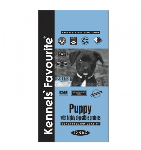 Kennels' Favourite PUPPY & JUNIOR
