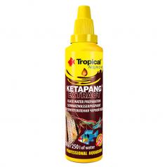 Tropical Ketapang Extract